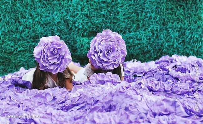 Цветы  с диаметром 45см 120штук  для фотопроекта Анастасии Панеевой  https://vk.com/paneeva фото 25