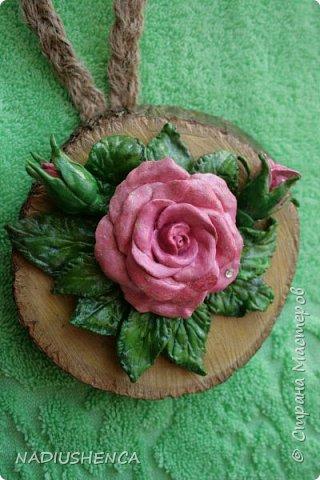 Роза на спиле дерева. фото 1