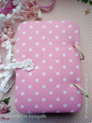Сегодня я к вам с блокнотиком для малышки, так называемый беби-бук. фото 3