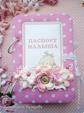Сегодня я к вам с блокнотиком для малышки, так называемый беби-бук. фото 1