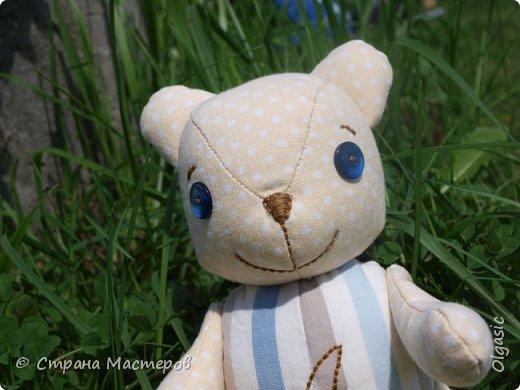 Этого мишку я сшила в подарок своей племяннице. Зовут ее Аленка, поэтому буква А вышита на животике) Опять по выкройке Екатерины Осиповой) http://rigierukodelki.blogspot.ru/  фото 2