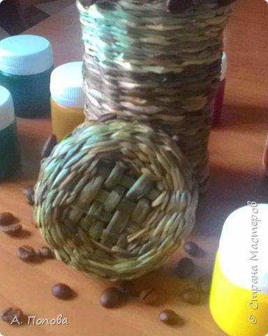 Летний речной зелененький камыш - прекрасный материал для плетения фото 1
