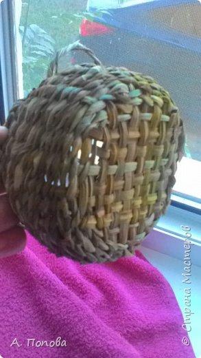 Летний речной зелененький камыш - прекрасный материал для плетения фото 6