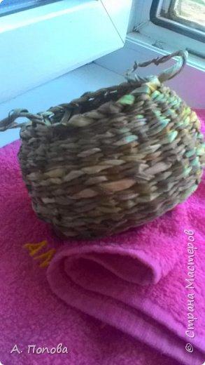 Летний речной зелененький камыш - прекрасный материал для плетения фото 4