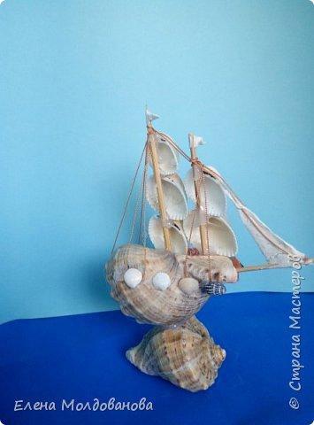 Отправила корабли в плаванье. Плодотворный отпуск принес свои результаты фото 7