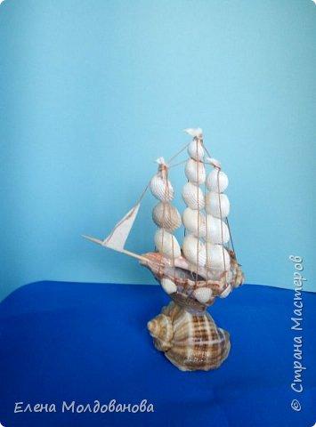 Отправила корабли в плаванье. Плодотворный отпуск принес свои результаты фото 8