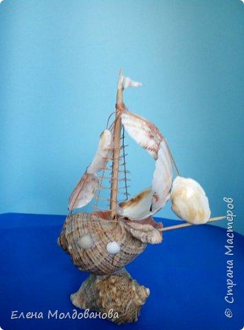Отправила корабли в плаванье. Плодотворный отпуск принес свои результаты фото 9
