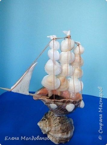 Отправила корабли в плаванье. Плодотворный отпуск принес свои результаты фото 11