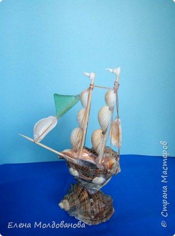 Отправила корабли в плаванье. Плодотворный отпуск принес свои результаты фото 12
