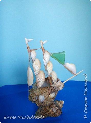 Отправила корабли в плаванье. Плодотворный отпуск принес свои результаты фото 13