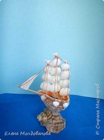Отправила корабли в плаванье. Плодотворный отпуск принес свои результаты фото 14