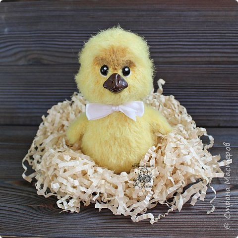 Цыплёнок фото 2