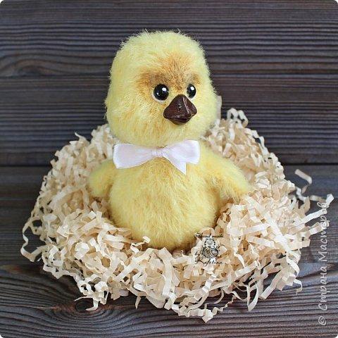 Цыплёнок фото 3
