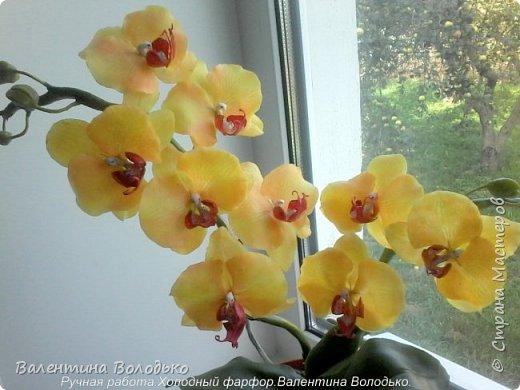 Добрый день жители Страны Мастеров.У меня снова орхидейка. фото 2