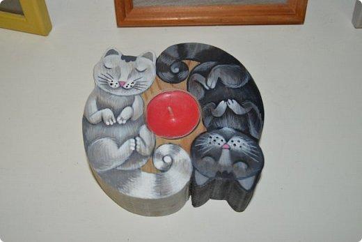 """Здравствуйте, дорогие друзья!!! Приглашаю всех любителей котов и кошек на экскурсию в необычный кошачий музей, который находится в центре Минска. Музей Кота - уникальное в своём роде культурно-развлекательное место, где живёт, пожалуй, самое милое произведение искусства, созданное матушкой-природой. Главные """"экспонаты"""" музея - это живые коты и кошки!!! фото 23"""