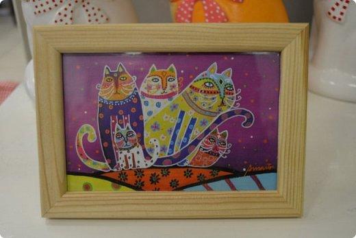 """Здравствуйте, дорогие друзья!!! Приглашаю всех любителей котов и кошек на экскурсию в необычный кошачий музей, который находится в центре Минска. Музей Кота - уникальное в своём роде культурно-развлекательное место, где живёт, пожалуй, самое милое произведение искусства, созданное матушкой-природой. Главные """"экспонаты"""" музея - это живые коты и кошки!!! фото 26"""