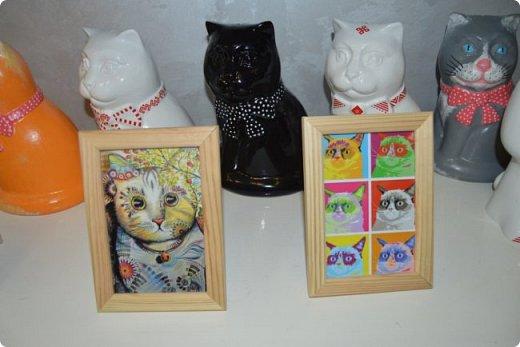 """Здравствуйте, дорогие друзья!!! Приглашаю всех любителей котов и кошек на экскурсию в необычный кошачий музей, который находится в центре Минска. Музей Кота - уникальное в своём роде культурно-развлекательное место, где живёт, пожалуй, самое милое произведение искусства, созданное матушкой-природой. Главные """"экспонаты"""" музея - это живые коты и кошки!!! фото 27"""