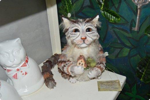 """Здравствуйте, дорогие друзья!!! Приглашаю всех любителей котов и кошек на экскурсию в необычный кошачий музей, который находится в центре Минска. Музей Кота - уникальное в своём роде культурно-развлекательное место, где живёт, пожалуй, самое милое произведение искусства, созданное матушкой-природой. Главные """"экспонаты"""" музея - это живые коты и кошки!!! фото 28"""
