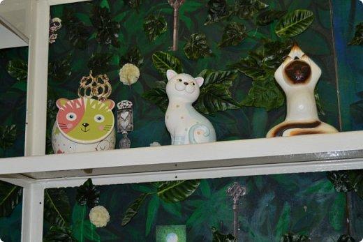 """Здравствуйте, дорогие друзья!!! Приглашаю всех любителей котов и кошек на экскурсию в необычный кошачий музей, который находится в центре Минска. Музей Кота - уникальное в своём роде культурно-развлекательное место, где живёт, пожалуй, самое милое произведение искусства, созданное матушкой-природой. Главные """"экспонаты"""" музея - это живые коты и кошки!!! фото 30"""