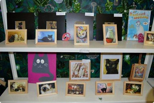 """Здравствуйте, дорогие друзья!!! Приглашаю всех любителей котов и кошек на экскурсию в необычный кошачий музей, который находится в центре Минска. Музей Кота - уникальное в своём роде культурно-развлекательное место, где живёт, пожалуй, самое милое произведение искусства, созданное матушкой-природой. Главные """"экспонаты"""" музея - это живые коты и кошки!!! фото 31"""