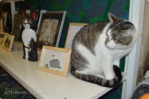 """Здравствуйте, дорогие друзья!!! Приглашаю всех любителей котов и кошек на экскурсию в необычный кошачий музей, который находится в центре Минска. Музей Кота - уникальное в своём роде культурно-развлекательное место, где живёт, пожалуй, самое милое произведение искусства, созданное матушкой-природой. Главные """"экспонаты"""" музея - это живые коты и кошки!!! фото 35"""