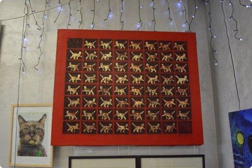 """Здравствуйте, дорогие друзья!!! Приглашаю всех любителей котов и кошек на экскурсию в необычный кошачий музей, который находится в центре Минска. Музей Кота - уникальное в своём роде культурно-развлекательное место, где живёт, пожалуй, самое милое произведение искусства, созданное матушкой-природой. Главные """"экспонаты"""" музея - это живые коты и кошки!!! фото 51"""