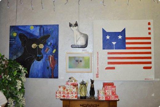 """Здравствуйте, дорогие друзья!!! Приглашаю всех любителей котов и кошек на экскурсию в необычный кошачий музей, который находится в центре Минска. Музей Кота - уникальное в своём роде культурно-развлекательное место, где живёт, пожалуй, самое милое произведение искусства, созданное матушкой-природой. Главные """"экспонаты"""" музея - это живые коты и кошки!!! фото 73"""