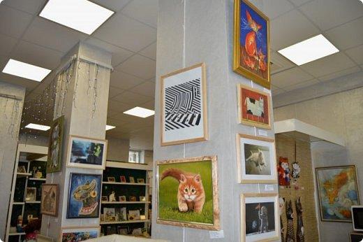 """Здравствуйте, дорогие друзья!!! Приглашаю всех любителей котов и кошек на экскурсию в необычный кошачий музей, который находится в центре Минска. Музей Кота - уникальное в своём роде культурно-развлекательное место, где живёт, пожалуй, самое милое произведение искусства, созданное матушкой-природой. Главные """"экспонаты"""" музея - это живые коты и кошки!!! фото 61"""