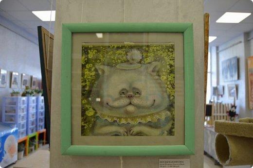 """Здравствуйте, дорогие друзья!!! Приглашаю всех любителей котов и кошек на экскурсию в необычный кошачий музей, который находится в центре Минска. Музей Кота - уникальное в своём роде культурно-развлекательное место, где живёт, пожалуй, самое милое произведение искусства, созданное матушкой-природой. Главные """"экспонаты"""" музея - это живые коты и кошки!!! фото 63"""