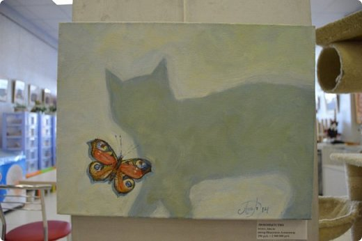 """Здравствуйте, дорогие друзья!!! Приглашаю всех любителей котов и кошек на экскурсию в необычный кошачий музей, который находится в центре Минска. Музей Кота - уникальное в своём роде культурно-развлекательное место, где живёт, пожалуй, самое милое произведение искусства, созданное матушкой-природой. Главные """"экспонаты"""" музея - это живые коты и кошки!!! фото 64"""