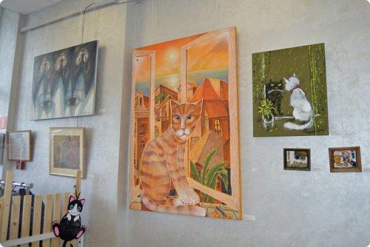 """Здравствуйте, дорогие друзья!!! Приглашаю всех любителей котов и кошек на экскурсию в необычный кошачий музей, который находится в центре Минска. Музей Кота - уникальное в своём роде культурно-развлекательное место, где живёт, пожалуй, самое милое произведение искусства, созданное матушкой-природой. Главные """"экспонаты"""" музея - это живые коты и кошки!!! фото 66"""