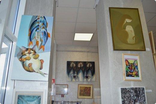 """Здравствуйте, дорогие друзья!!! Приглашаю всех любителей котов и кошек на экскурсию в необычный кошачий музей, который находится в центре Минска. Музей Кота - уникальное в своём роде культурно-развлекательное место, где живёт, пожалуй, самое милое произведение искусства, созданное матушкой-природой. Главные """"экспонаты"""" музея - это живые коты и кошки!!! фото 68"""