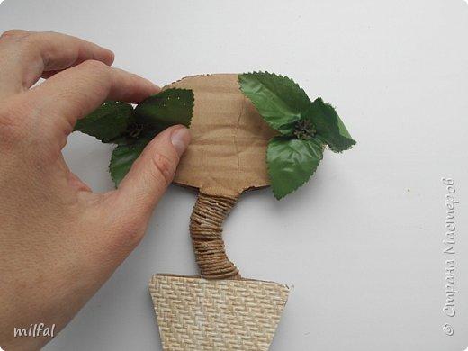 Здравствуйте жители и посетители страны мастеров!!!!!!!!!!!Хочу рассказать и показать как я делаю магниты - топиарии! Это не сложно!!!! Для этого понадобится: плотный картон,клей пва,лак,верёвки,цветочки,листочки всевозможные,обои,ракушки,морской песок, либо крупа,арбузные косточки..... фото 7