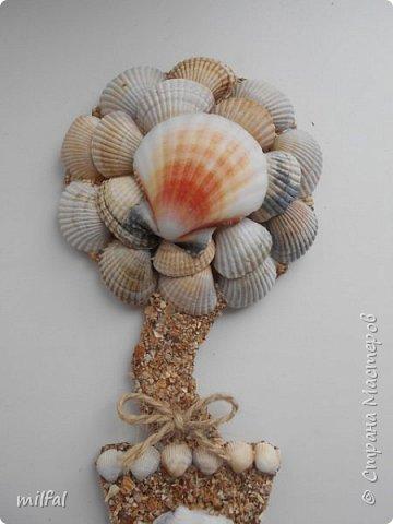 Здравствуйте жители и посетители страны мастеров!!!!!!!!!!!Хочу рассказать и показать как я делаю магниты - топиарии! Это не сложно!!!! Для этого понадобится: плотный картон,клей пва,лак,верёвки,цветочки,листочки всевозможные,обои,ракушки,морской песок, либо крупа,арбузные косточки..... фото 18