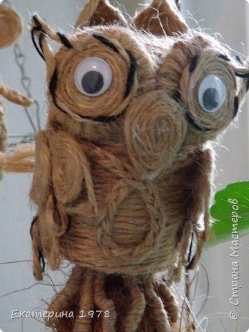 Совушка, сова большой нос фото 1