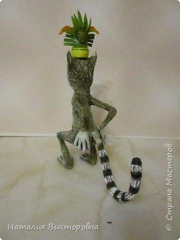 И снова -Мадагаскар! фото 6