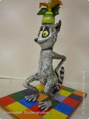И снова -Мадагаскар! фото 5