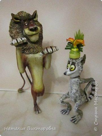 И снова -Мадагаскар! фото 13