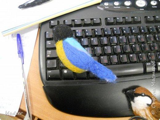 """Серия """"Птички"""" - они рельефные, одна сторона плоская, крепятся на стену. Принцип простой - распечатывается картинка, вырезается по контуру, лист с прорезью накладывается на основу 9в моем случае это обрезок шерстяного одеяла). Шерстью набивается сначала фоновый цвет, лишняя ткань обрезается. Потом набиваются крупные цветовые пятна, потом мелкие детали. Птичка-мультяшка. Распечатка из раскраски. фото 3"""