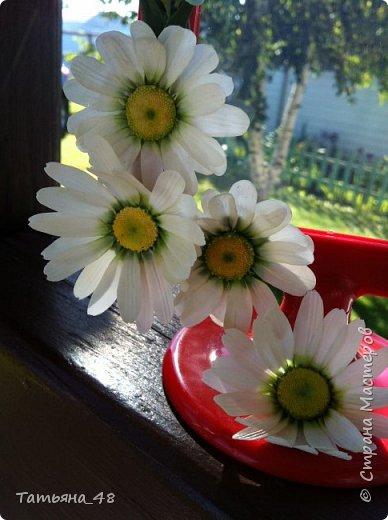 Привет всем!!!! Выставляю на ваш суд мое произведение в виде декора рамки...  Подарок для подруги....Вот устроила на даче фотосессию. Первая фото удачная получилась... с лучами солнышка... фото 7