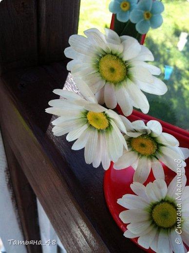 Привет всем!!!! Выставляю на ваш суд мое произведение в виде декора рамки...  Подарок для подруги....Вот устроила на даче фотосессию. Первая фото удачная получилась... с лучами солнышка... фото 8