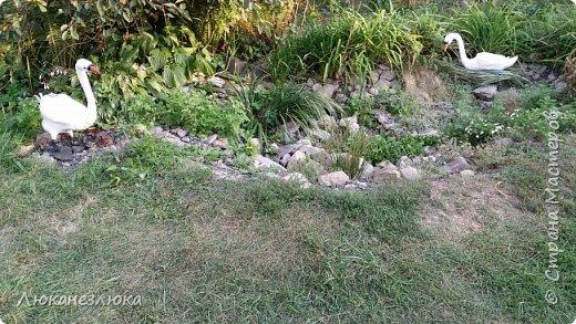 Доброе время суток ,друзья! Самого первого своего уличного лебедя ,я делала не укрепляя его клеем...и как результат, через несколько лет, его оперение рассыпалось...И вот я решила не выбрасывать конструкцию лебедя ,а реставрировать:-) фото 10