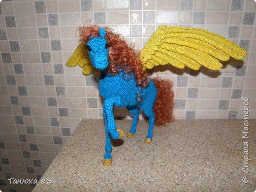 Коняшки фото 11