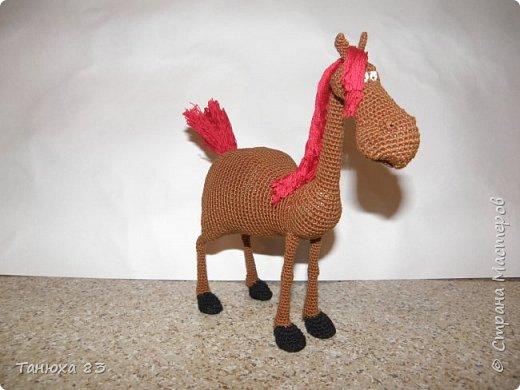 Коняшки фото 8