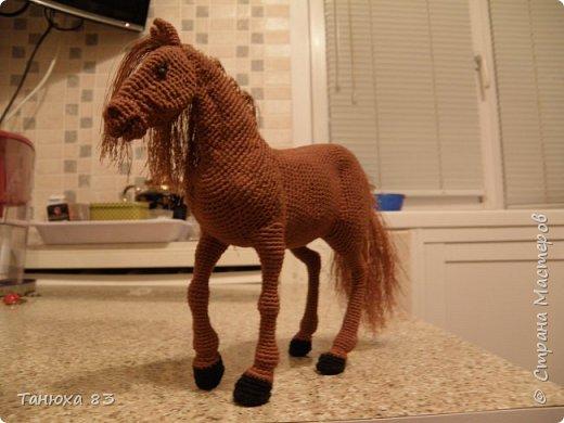 Коняшки фото 3
