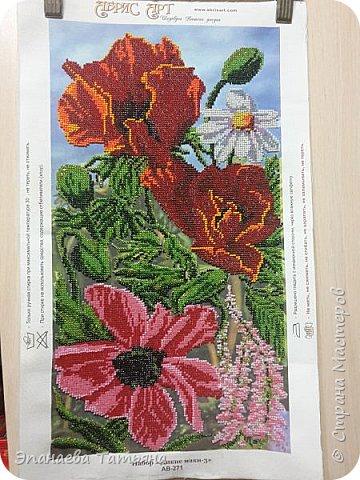 """Набор для вышивания бисером """"Дикие маки -3"""" от Абрис Арт, размер 23,5*43,5. Так выглядел набор, когда я его открыла, 26 мая 2016 г. фото 2"""