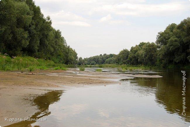 Всем доброго вечера! Спешу поделиться с вами воспоминаниями о лете... Любич - рукав Десны. Длина около 15 км, русло реки неглубокое, но течение достаточно быстрое.   фото 5