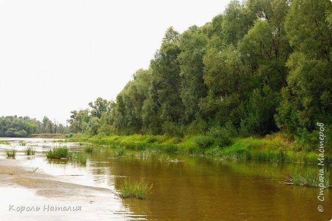 Всем доброго вечера! Спешу поделиться с вами воспоминаниями о лете... Любич - рукав Десны. Длина около 15 км, русло реки неглубокое, но течение достаточно быстрое.   фото 16