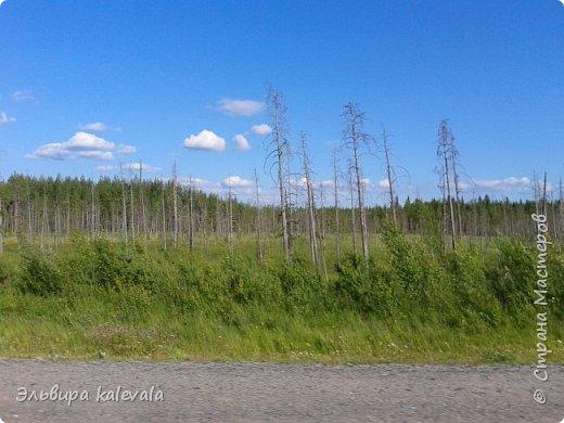 Небо, небо, синее небо летом в Карелии. фото 3