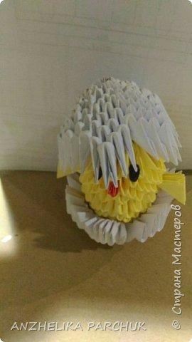 Цыпленок в скорлупе  фото 3